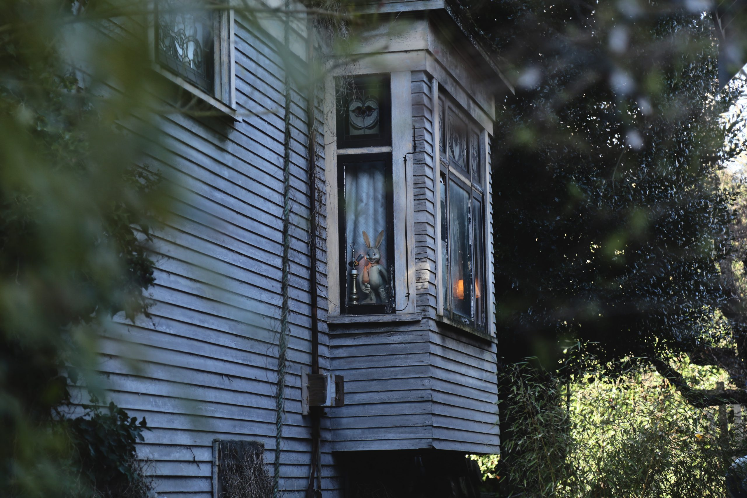 Renovating A Character Home In Vancouver